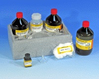 Detergents cationic