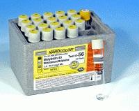 Molybdenum 40